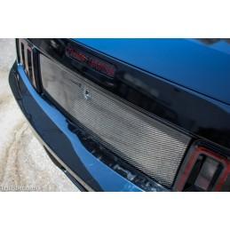 Panneau de coffre carbone Mustang 2005-09 TC10024-LG288