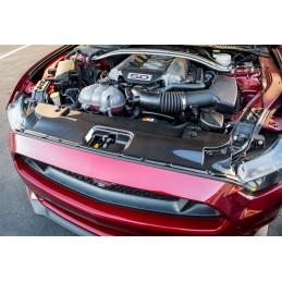 Couvre radiateur carbone Mustang 2015-17