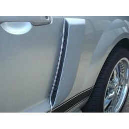Prises d'air latérales peintes standard Ford (05-09)